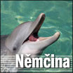 Der Delfin als Lebensretter
