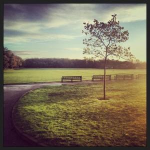 Fotografie zimního rána